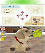 Nintendogs: Labrador and Friends screenshot 6