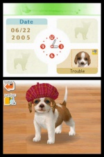 Nintendogs: Labrador and Friends screenshot 17