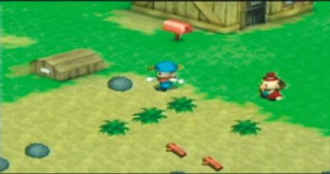 Harvest Moon: Boy & Girl Screenshots - Neoseeker