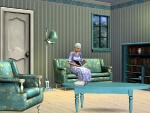 The Sims 3 screenshot 13