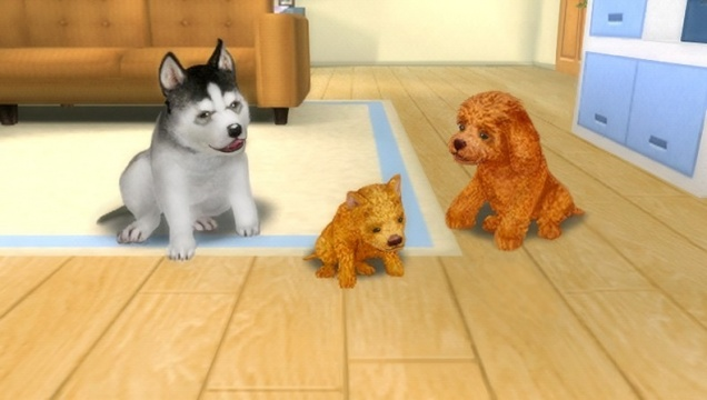 Petz dogz pack rom nds rom/ nds download from freeroms. Com.
