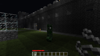 Minecraft screenshot 15
