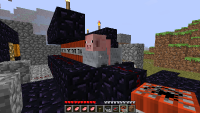 Minecraft screenshot 16