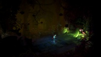 Trine 2 screenshot 9