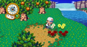 Flower Hybrids Animal Crossing Wiki Neoseeker