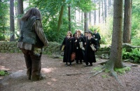 Care Of Magical Creatures Harry Potter Wiki Neoseeker