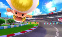 Toad Circuit.png
