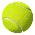 TennisBallMTO.jpg