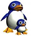 Penguin sm64.jpg