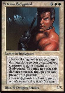 Veteran Bodyguard B.jpg