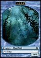 Kelp.jpg