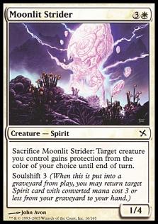 Moonlit Strider BOK.jpg