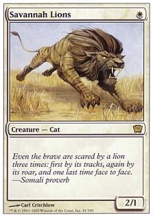 Savannah Lions 9E.jpg