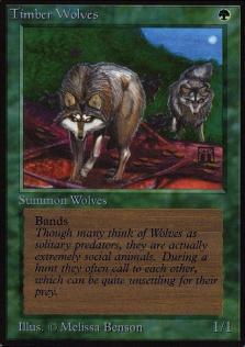 Timber Wolves B.jpg