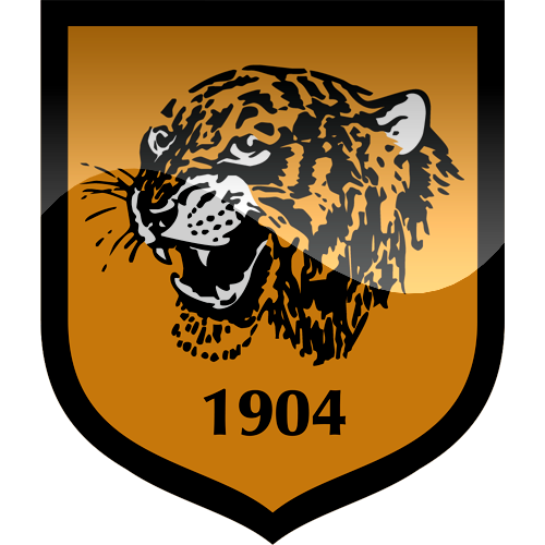 Hull Tigers.png